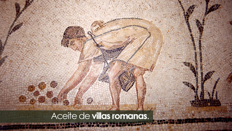 olivos epoca romana