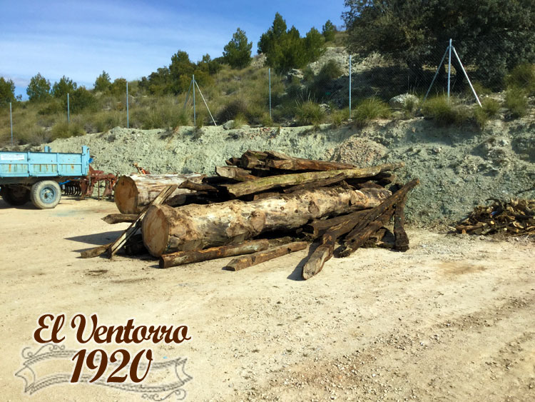 Vigas de Roble en Venta de olivos