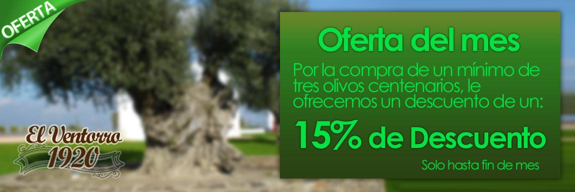 Oferta en Venta de olivos