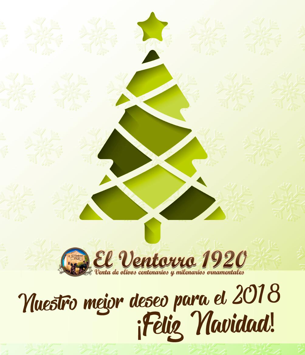 FELIZ NAVIDAD 2017 - Venta de Olivos en Madrid   Olivos Milenarios y ...